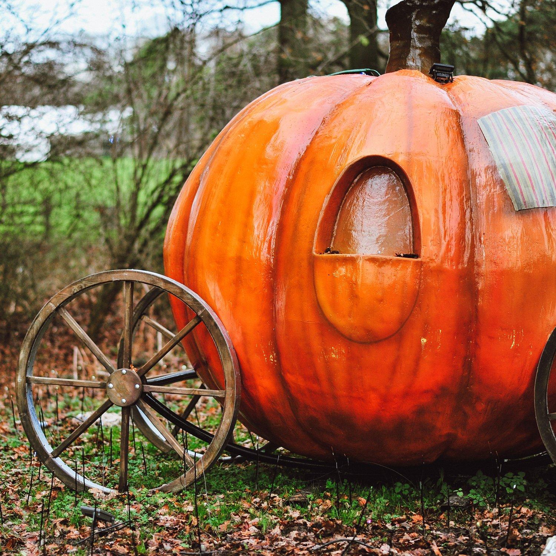 Stockeld Park Scenic Theming Play Space pumpkin